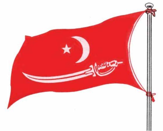 """Bendera Kerajaan Islam Aceh Darussalam """"Alam Zulfiqar"""" (Bendera Pedang). adisuseno.wordpress.com"""