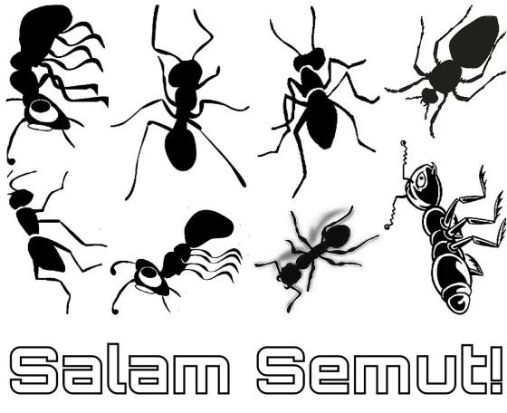 Salam Semut