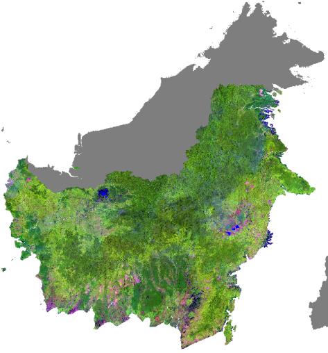 Pulau Kalimantan (mitrausahamandiriborneo.blogspot.com)