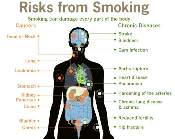 Smoking can damage every part of the body (wikipedia).