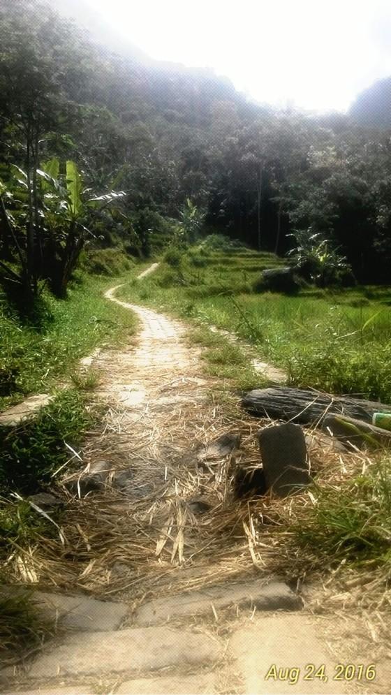 Akses jalan menuju Candi. Merupakan satu-satunya jalan dan hanya bisa dilewati motor atau pejalan kaki.
