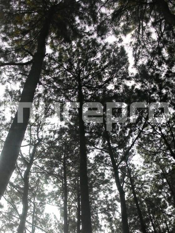 PicsArt_08-30-11.06.02