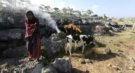 Penduduk Socotra (boombastis.com)